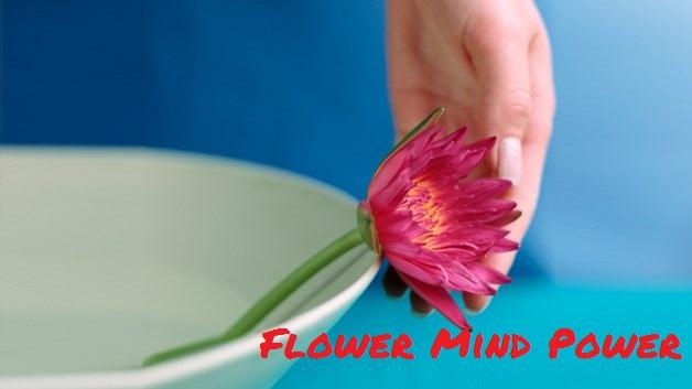 Flower Mind Power- italianlover.eu-il-fiore-potere-della-mente